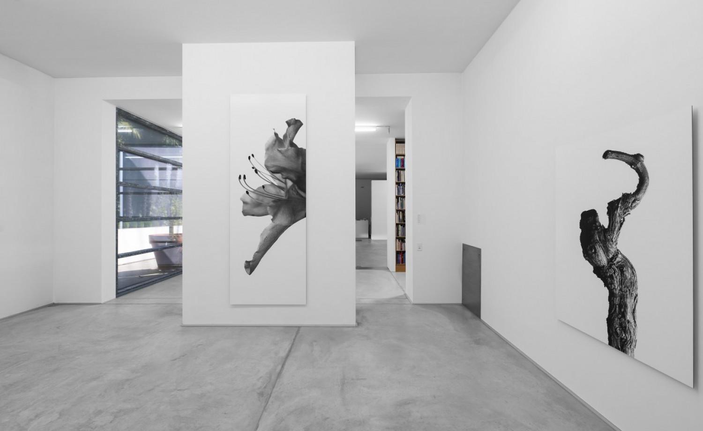 Marco D'Anna, Installation view, Buchmann Lugano, 2016