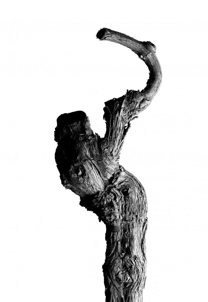 Marco D'Anna, 'OLTRE N.9', 2016