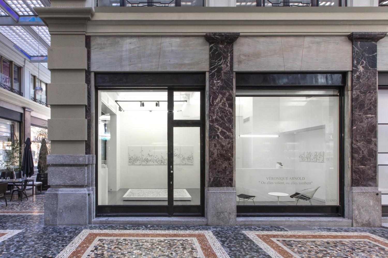 Véronique Arnold, '«Ou elles volent, ou elles tombent»', Installation view, Buchmann Lugano / Via della Posta, 2018