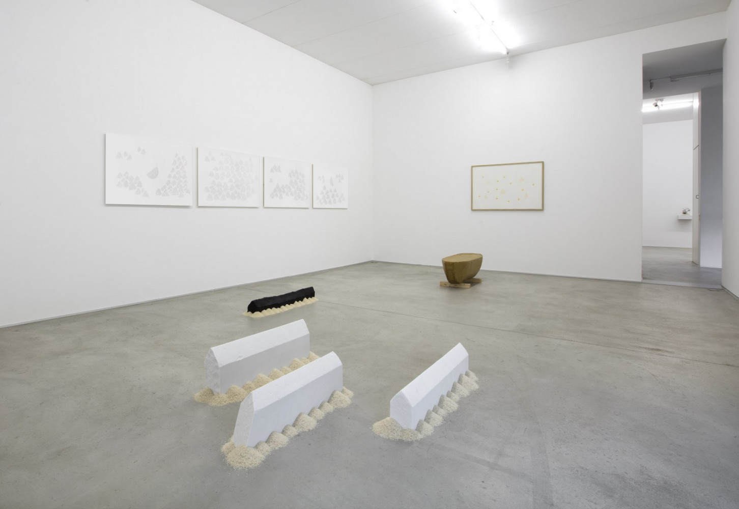 Wolfgang Laib, Installation view, Buchmann Lugano, 2017