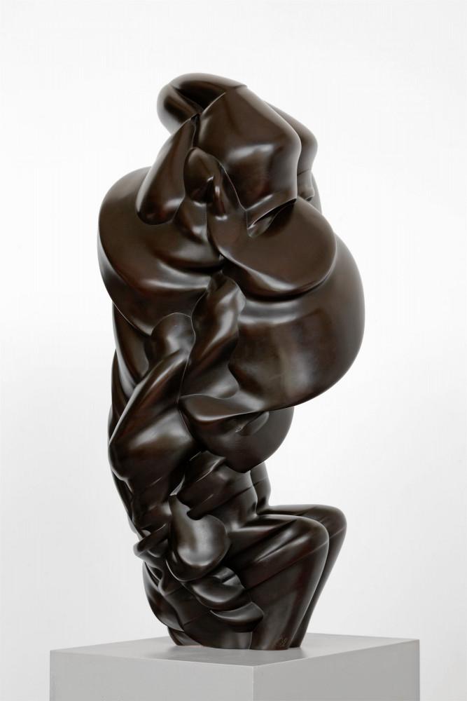 Tony Cragg, 'After we've gone', 2013