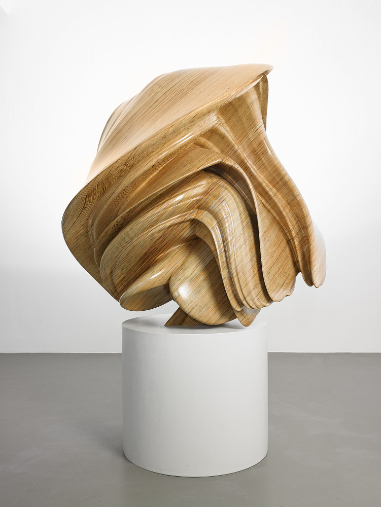 Tony Cragg, 'Willow II', 2015