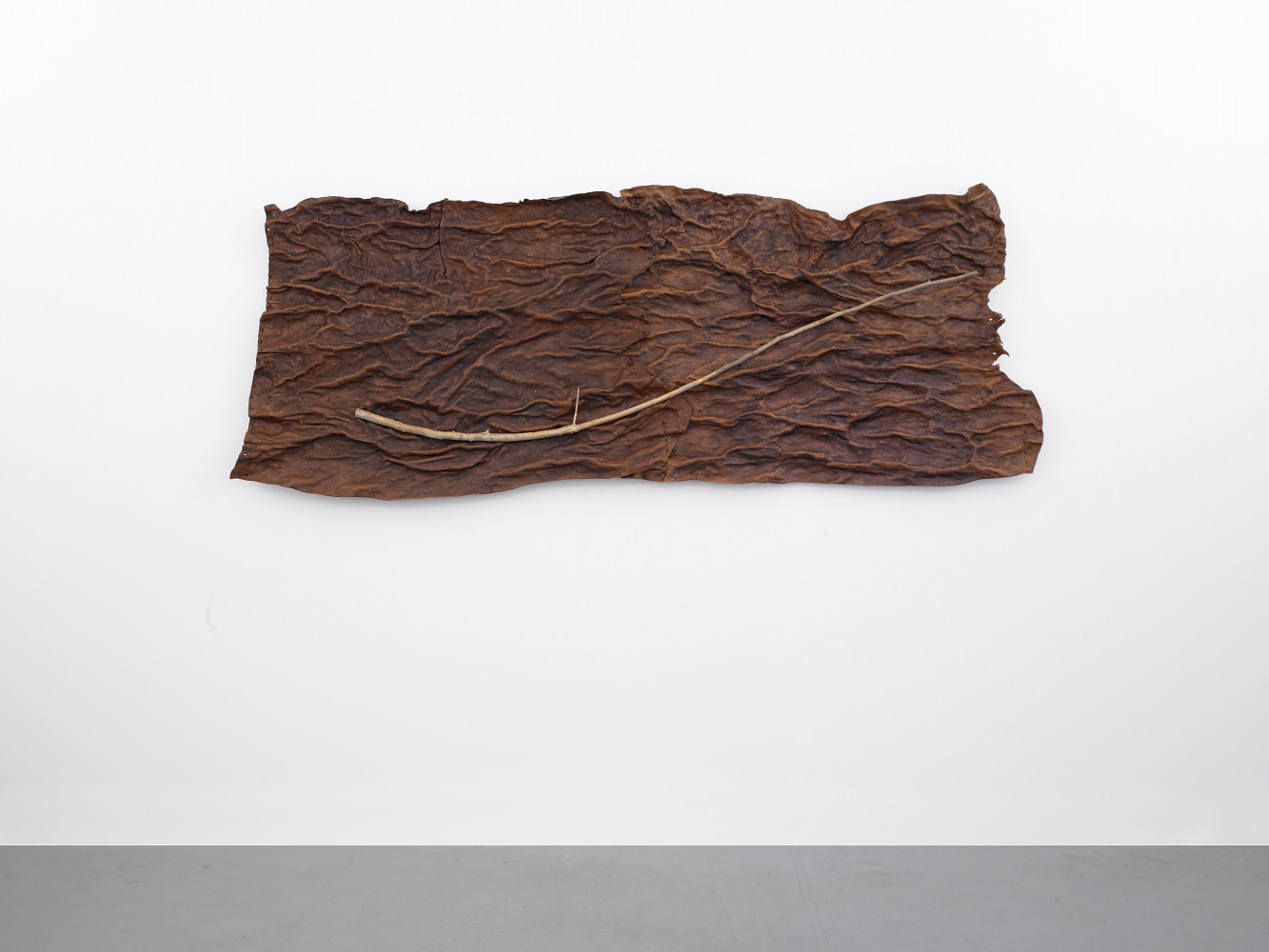 'Guiseppe Penone', Installation view, 2014