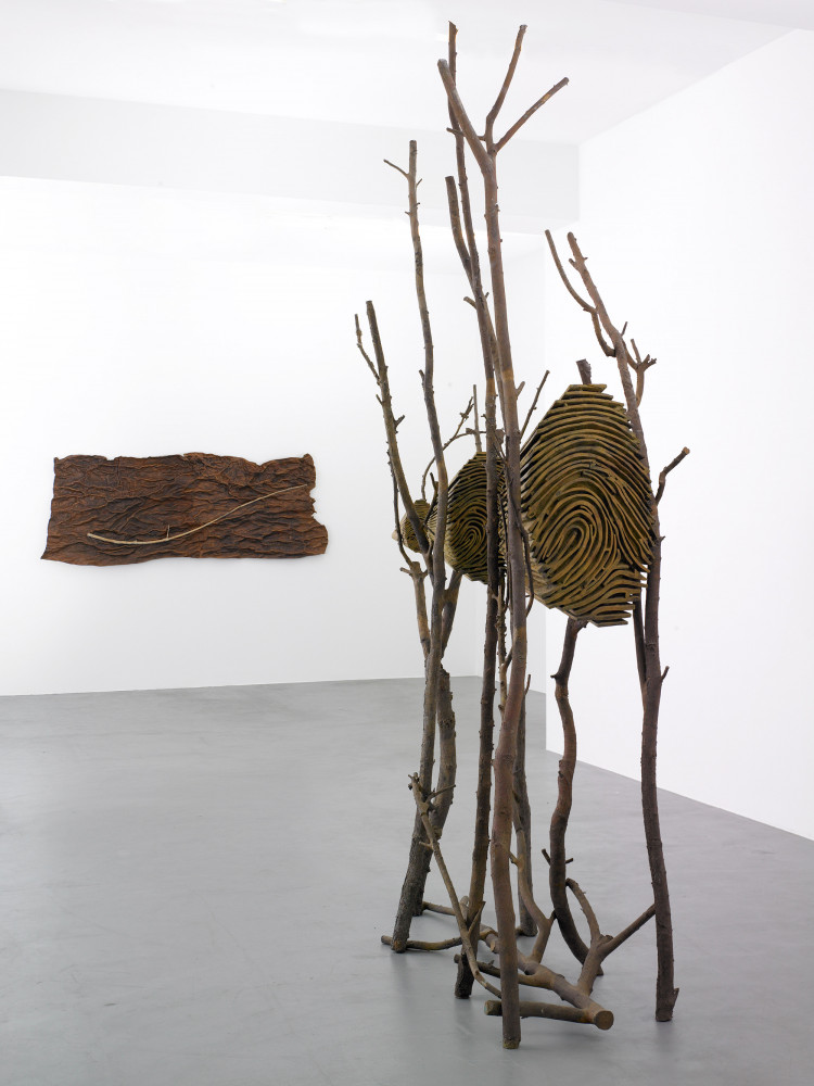 'Guiseppe Penone', Installation view, Buchmann Galerie, 2009