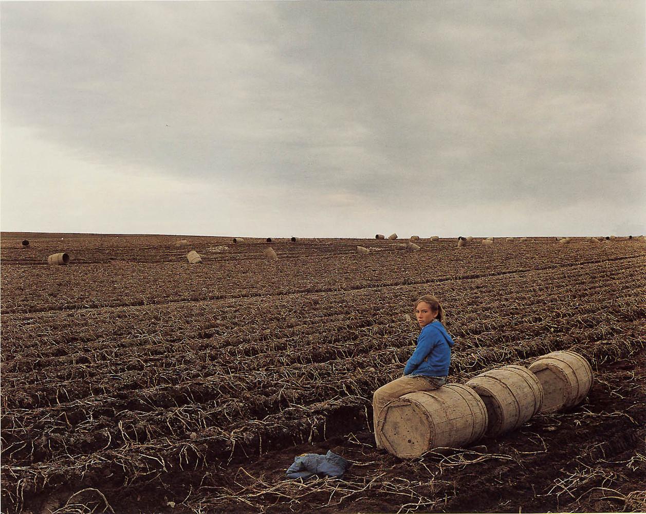 Joel Sternfeld, 'Potato Harvest, Aroostook County, Main, October', 1982
