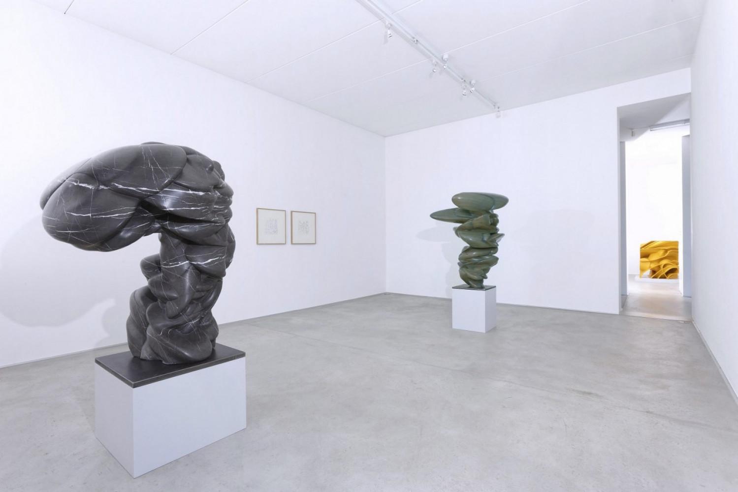 Tony Cragg, 'Sculture', Installation view, 2015