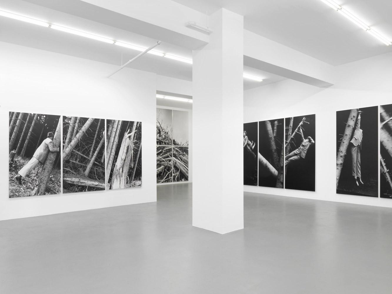 Anna & Bernhard Blume, 'Im Wald', Installation view, Buchmann Galerie, 2014