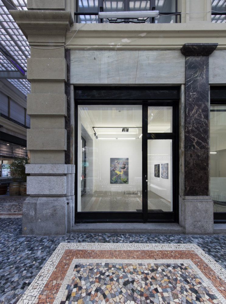 Fiona Rae, Installation view, Buchmann Lugano, 2017
