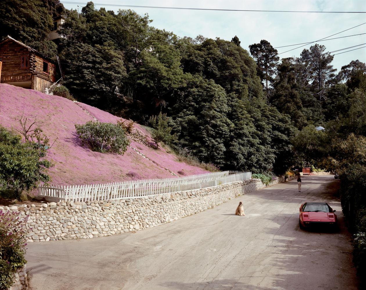 Joel Sternfeld, 'Rustic Canyon, Santa Monica, California, May 1979', 1982