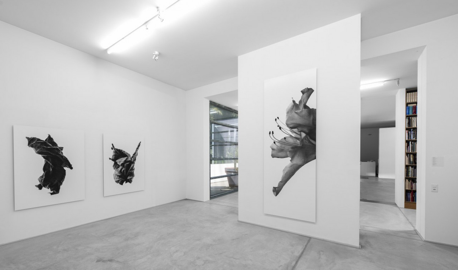 Marco D'Anna, 'Oltre', Installation view, Buchmann Galerie Agra / Lugano, 2016