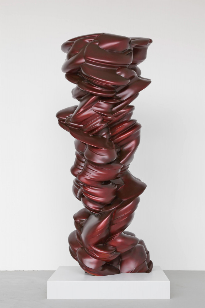 Tony Cragg, 'Mixed Emotions', 2011