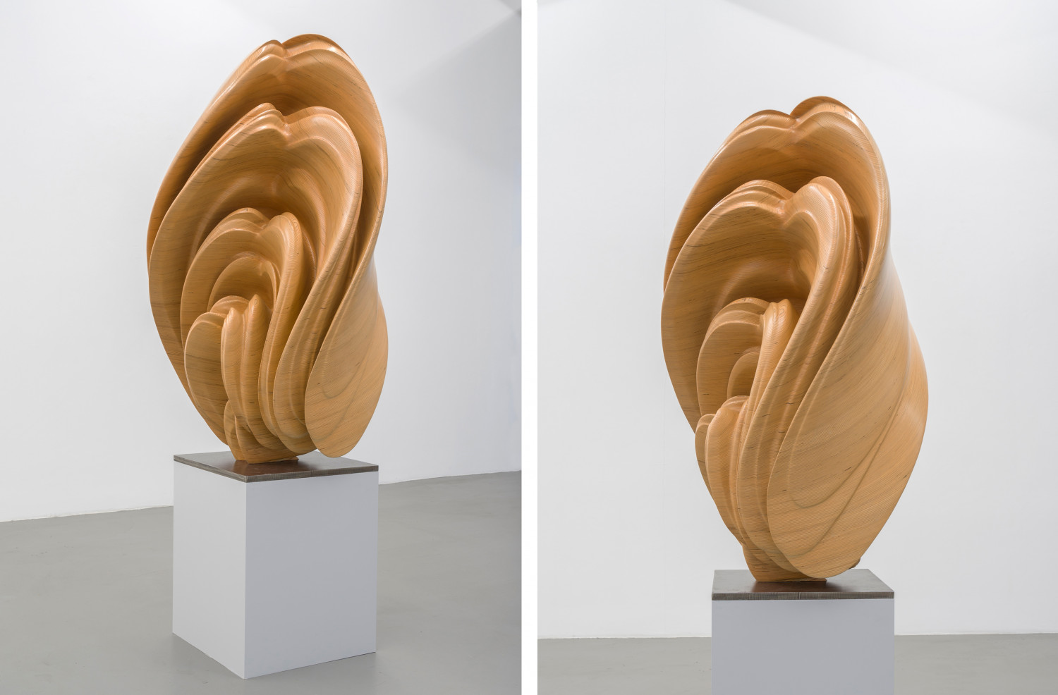 Tony Cragg, 'Willow', 2017